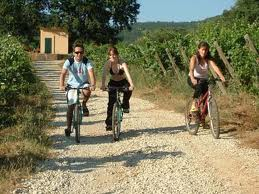 excursions en VTT